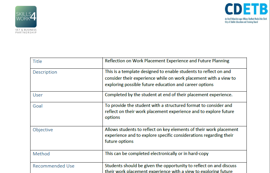Reflection on Work Placement Experience and Future Planning